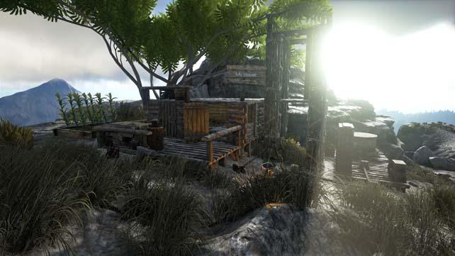 Ark (3)